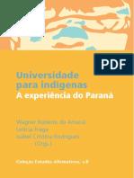 Universidade para indígenas - a experiência do Paraná