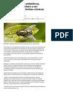 010-07_'Aposentadas' por antibióticos, larvas de mosca voltam a ser usadas para tratar feridas crônicas - Notícias - Saúde