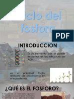 Presentación3 ECOLOGIA