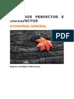 Mercados Perfectos e Imperfectos