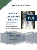 -Obstruccion-Intestinal.docx
