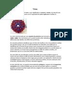 Virus Lourdes