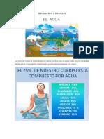Clase 01 Las Irrigaciones en El Peru