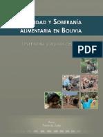 2010-05BoliviaPASA