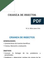 Crianza de Insectos
