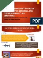 fauna - 7.pptx