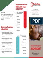 Brosur Hipoglikemi.pdf