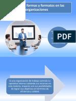 Formatos de La Organizacion