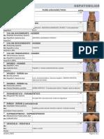 pt_33a_Hepatobiliar.pdf