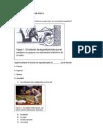 ACTIVIDAD DE RECUPERACION FISICA 6.docx