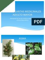 Taller Plantas Medicinales Adultos Mayores 2018 1