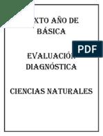 Evaluaciónes Ccnn y Estudios Sociales 6to Doce