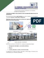 tintura-de-fibras-celulc3b3sicas-con-colorantes-reactivos-iii.pdf