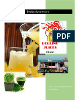 plan_empresa_bebidas.pdf