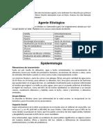 175338685-10-Salmonella-Typhi.docx