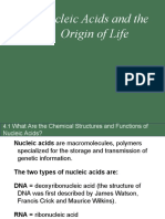 Chapter 4-Nucleic Acids and the Origin of Life(1)