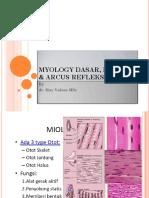 Myology Refleks & Arcus Refleks