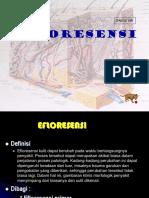 effloresensi