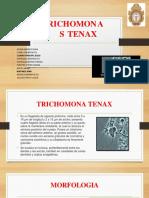Trichomonas Tenax