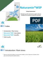 Naturamin-WSP ING Presentacion V3