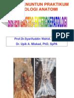 Atlas Prakt Gastrohepatologi