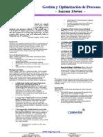 Gestion y Optimizaciuon de Procesos Poldat
