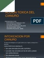 Accion Toxica Del Cn