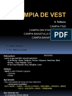 Campia de Vest