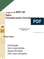 Água - Workshop.pdf