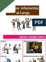 Riesgos Inherentes Al Cargo (2)