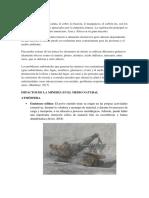 Consulta Medio Ambiente