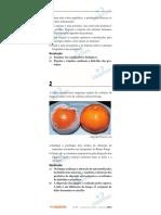 prova objetivo 4.pdf