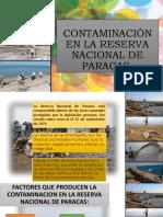Contaminación en La Reserva Nacional de Paracas