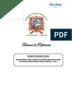 TDR - Preubas de Densidad de Campo