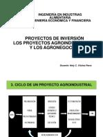 Proyectos de Inversión,