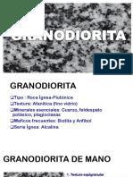 Granodiorita seccion delgada