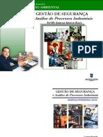 Gestão de segurança e análise de processos industriais - Prof MSc Uanderson Rebula
