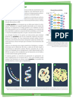2P-9 LECTURA INICIAL.pdf