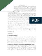 Informe de Biosurfactantes (1)