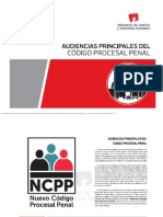 Audiencias-Principales-Del-CPP.pdf