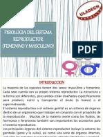 Fisiologia III Unidad Fisiologia Aparato Reproductor