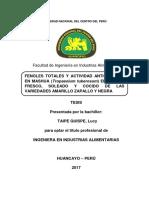 mashua vvv.pdf