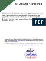 Desarrollo Del Lenguaje Neurociencia.pptxDESARROLLO