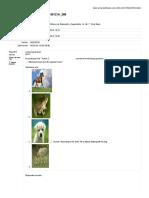 348924384-Evaluacion-Ingles.pdf