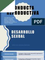 Conducta Reproductiva Completas