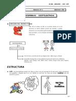 II BIM - BIOLOG - 2do. Año - Guía 6 - Angiospermas Dicotiled