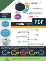 Infografía-TIGIE.pdf