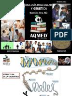 Biologia Molecular Medicina - Lo primordial
