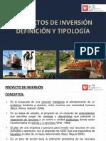 Definiciones y Tipología de Proyectos