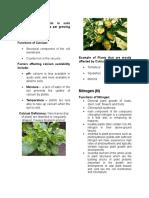 Reprt Plant Nutrition Final